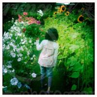 Blumenpflücken
