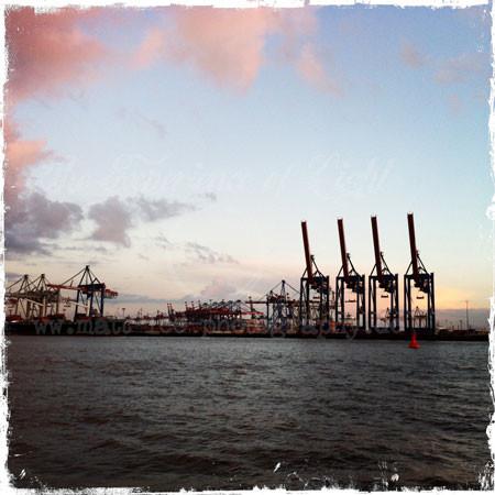 Elbe-rosa-Wolken1