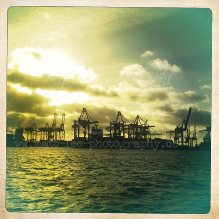 Hafen-Sunset