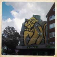 Affe auf Wand