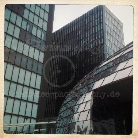 Glashaus gemeinschaft
