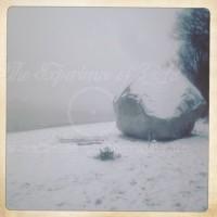 Schwede im Schnee