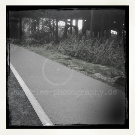 Der Weg ist Klar