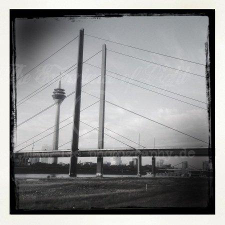 Rhein-Knie-Brücken