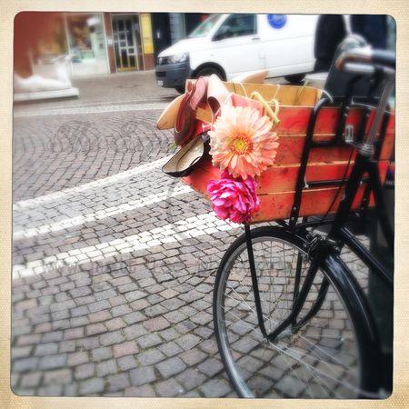Rad mit Blume