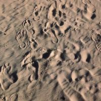 fehmarn-barefoot